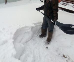 pokupka-snegouborshchika